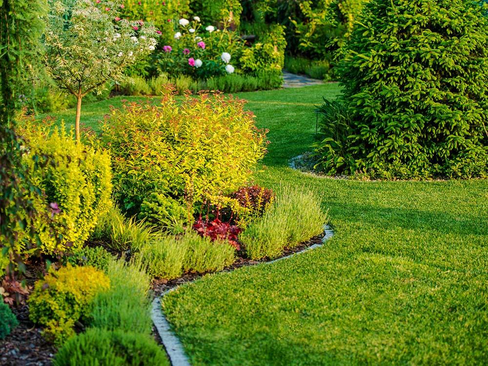 Max Garden jardin fleuri