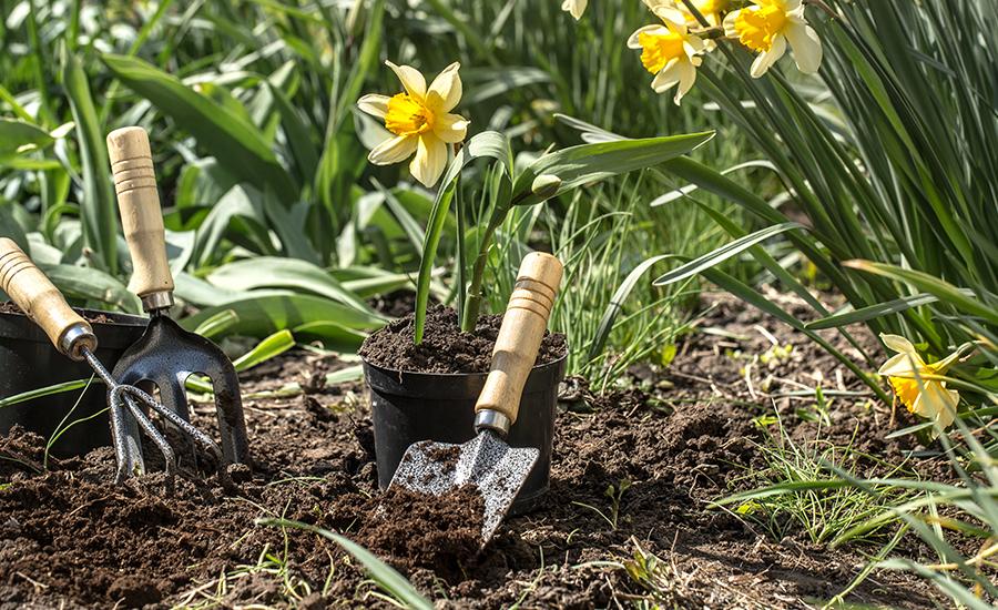 Aménagement paysager - Création de jardins